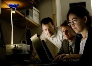 I Professori Jeffrey Carruthers, Thomas Little e Hatice Altug (da sinistra) usano un ricetrasmettitore a LED per spedire messaggi senza fili tra computer portatili.